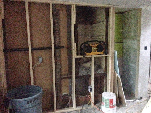 Renovation Project - IMG_0187.JPG