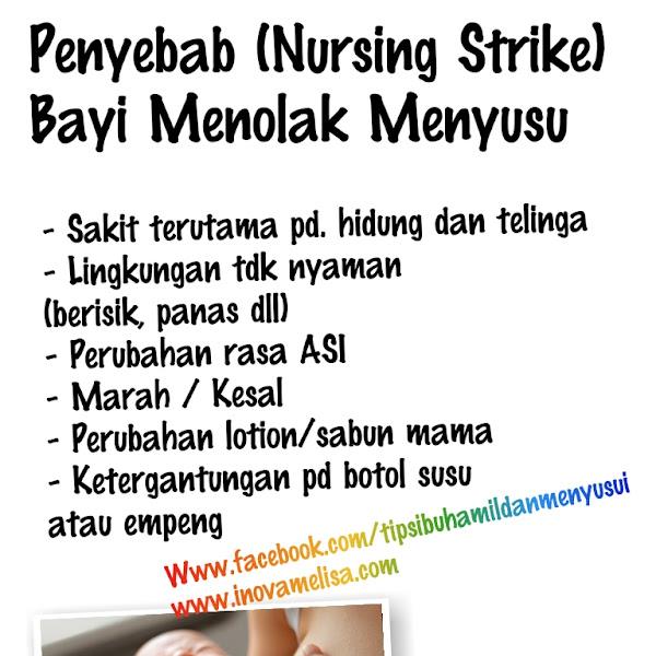 Penyebab Bayi Menolak Menyusu ( Nursing Strike )