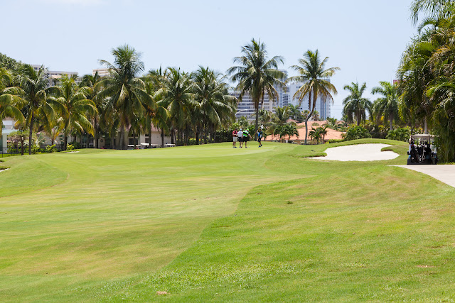 2015 Golf Tournament - 2015%2BLAAIA%2BConvention-1666.jpg