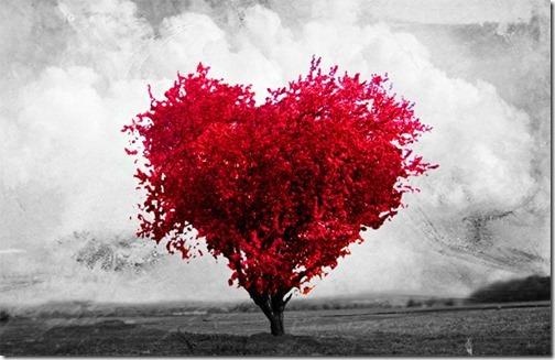corazones amor te quiero 14febrero (17)