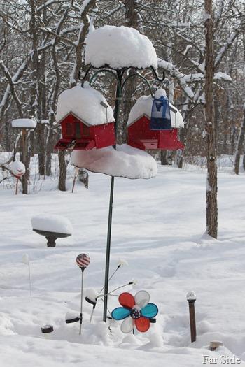 Snow Feb 20