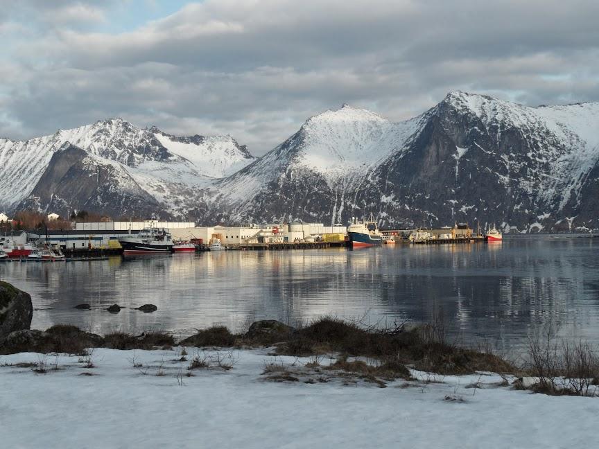 Norvège mars 2014 SAM_1216