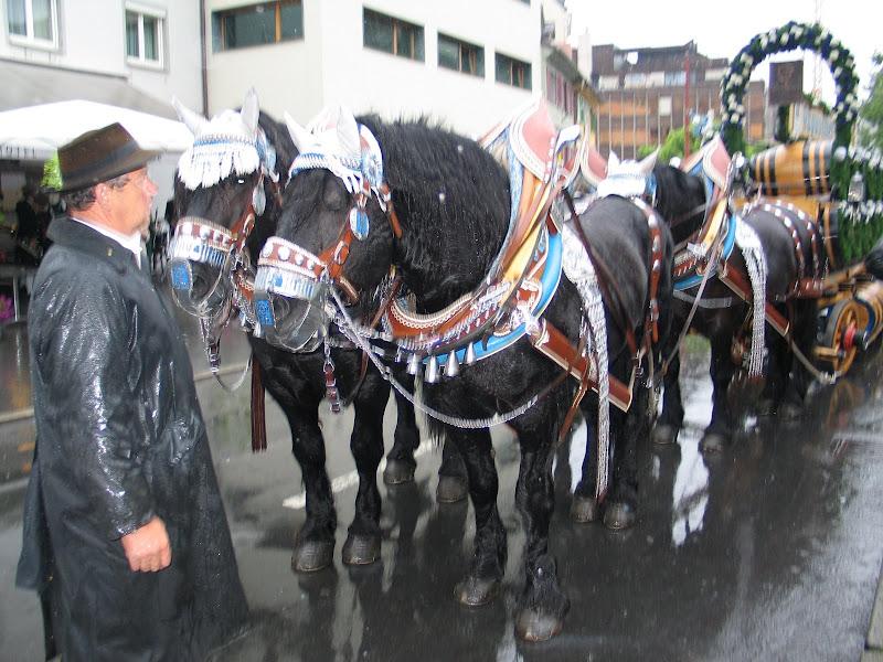 KORNMESSER GARTENERÖFFNUNG MIT AUGUSTINER 2009 018.JPG