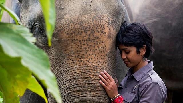 'Saya sebaik para pria': Aktivis lingkungan asal Aceh berjuang melindungi megafauna kawasan Leuser