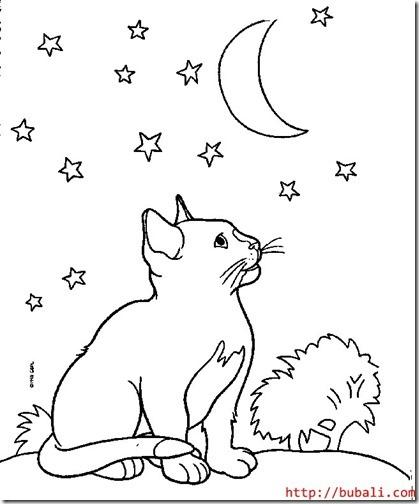 gatos colorear blogcolorear (6)