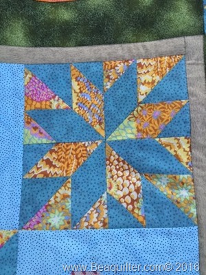 Lets Fly Quilt Close up of Leymone Star