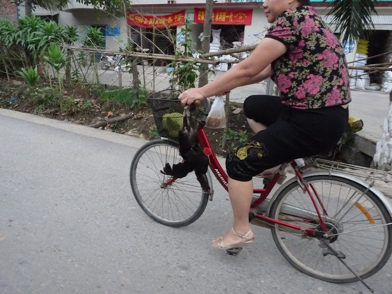Chine . Yunnan..Galamba, Menglian Album A - Picture%2B254.jpg