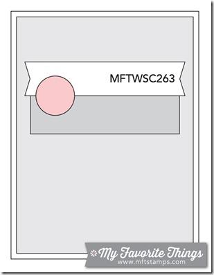 MFT_WSC_263