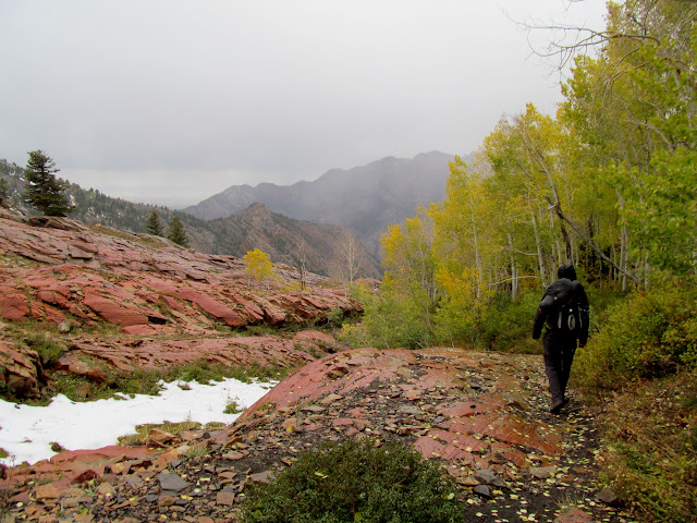 Descending toward Big Cottonwood in the rain