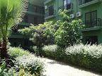Фото 4 Larissa Hotel Beldibi