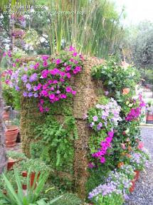 murs végétaux pépinière grangier spécialisé la première en france