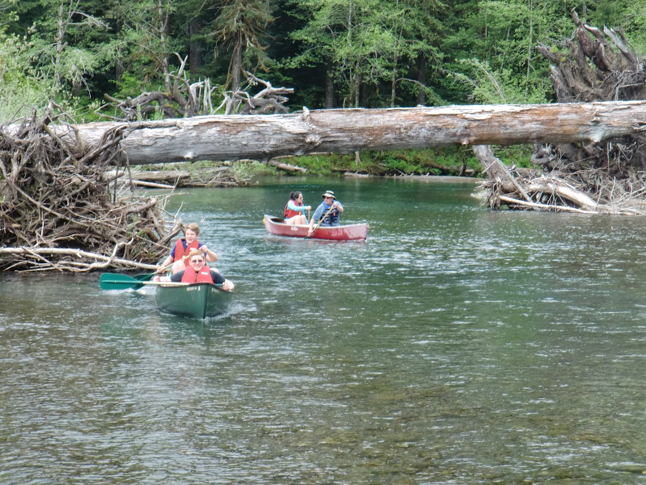 May 2014 Wynoochee Lake Camp/Canoe - CIMG5201.JPG