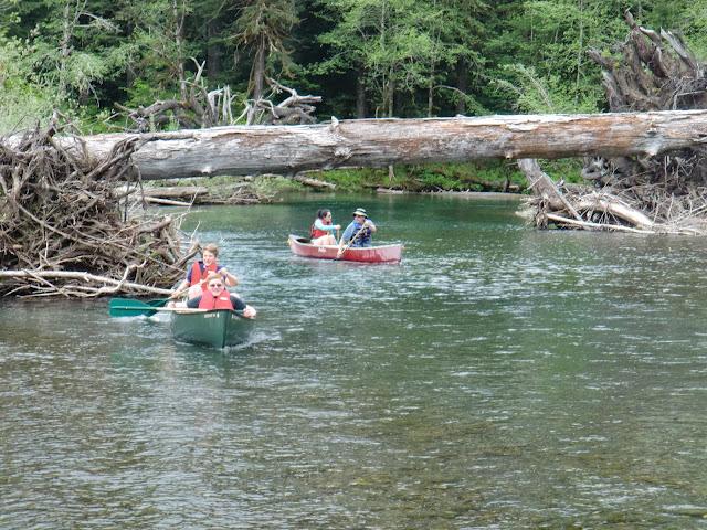 May 2014 Wynoochee Lake Camp/Canoe - CIMG5201.JPG