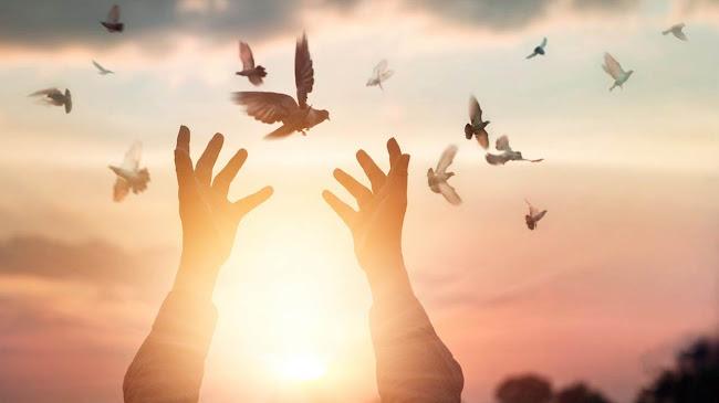 Ðể cho lòng tha thứ tiếp tục hiện hữu