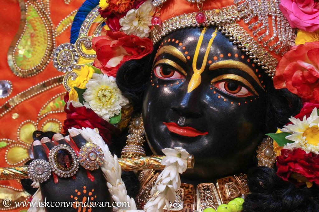 ISKCON Vrindavan Sringar Deity Darshan 12 Mar 2016 (12)