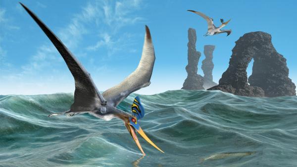 Magic Waves, Magical Landscapes 1
