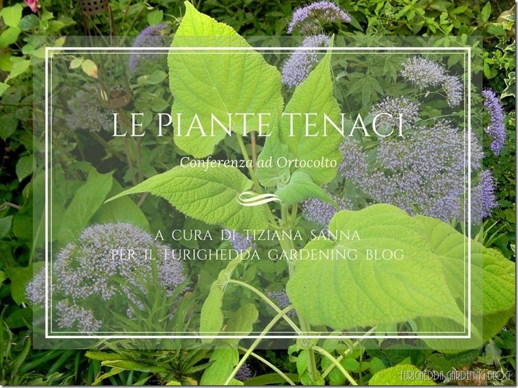 Le piante tenaci 1