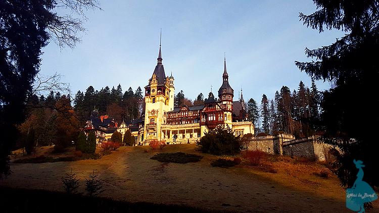 castel peles decembrie 2015