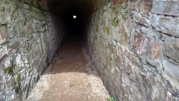 Garden Tunnel 001