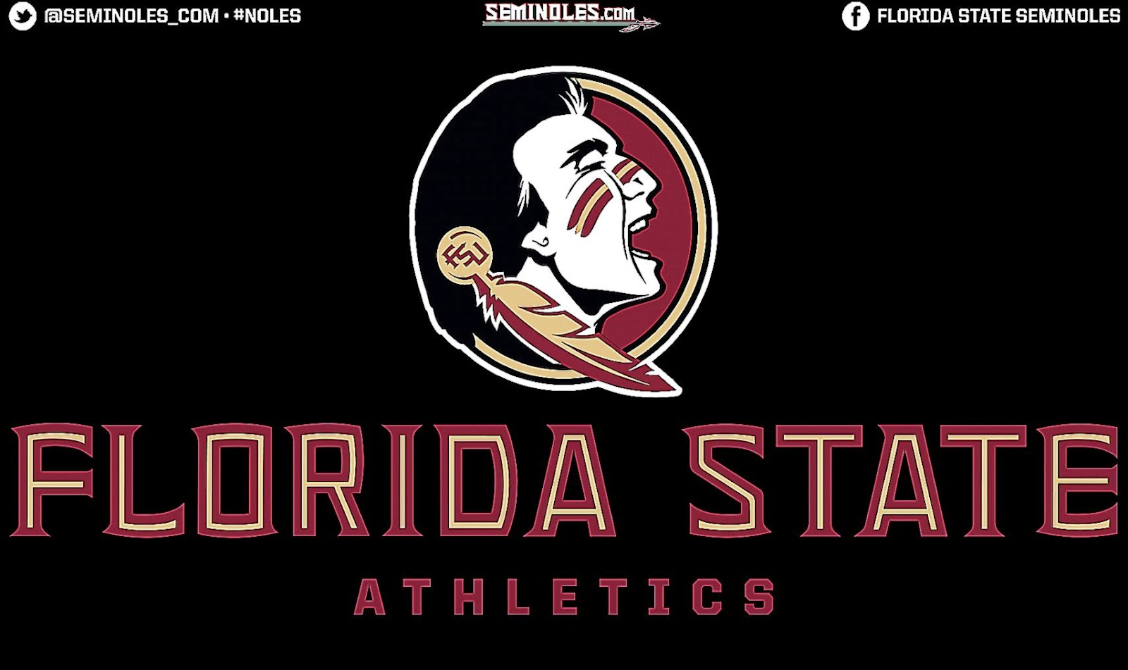 Volleyball Wallpaper Quotes Florida State Seminoles Wallpaper Cool Hd Wallpapers