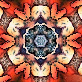 Kaleidoscope art by Arjun Madhav - Digital Art Abstract ( kaleidoscope, kaleidoscope art, digital art, digital drawing, photography, flower photography )