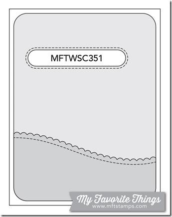 MFT_WSC_351
