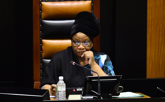 Drama as South Africa Parliament's Zoom Meeting Is Hacked With Pornography