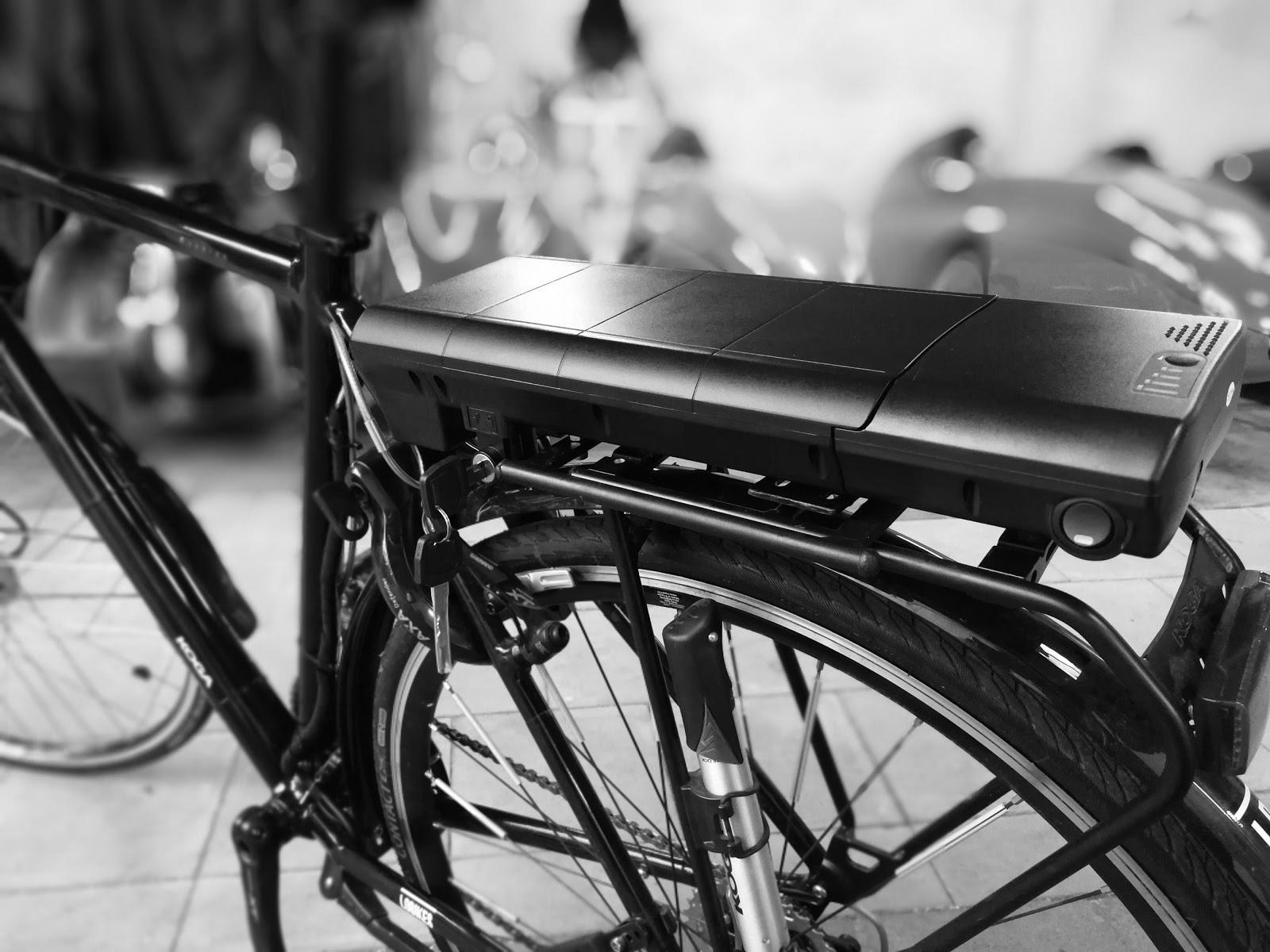 Lichte Elektrische Fiets : Fietser be koga custom elektrische fiets