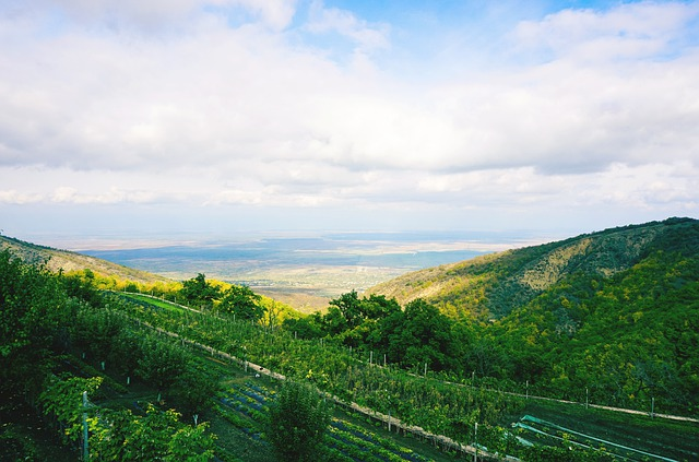 landscape georgia