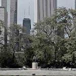 Chicago (56 of 83).jpg
