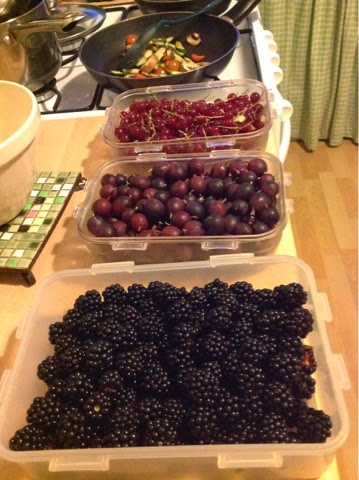 Blackberries, gooseberries and red currants
