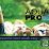 Aqua Pro Lawn Sprinkler Systems Inc's profile photo