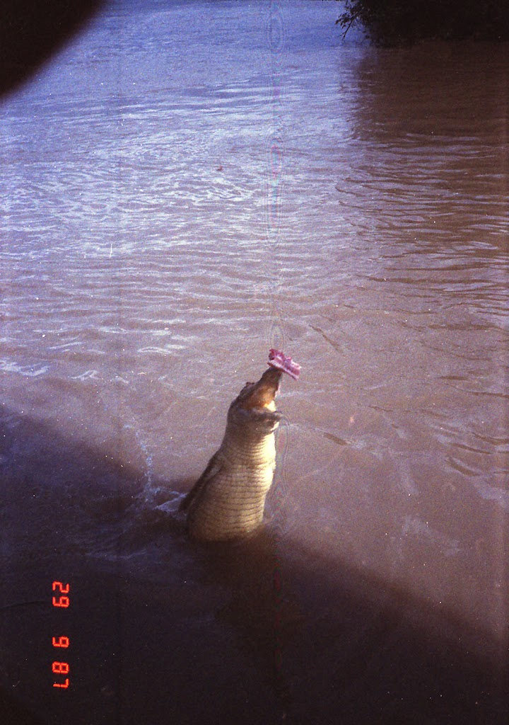 6090Adelaide River Croc Tour