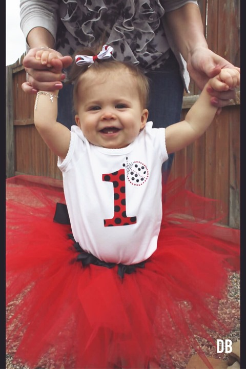 Ladybug First Birthday Outfit by Daydream Believers Designs