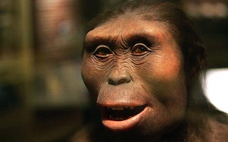 día del orgullo primate, dia del orgullo primate, sin dioses, lucy, darwin, origen de las especies