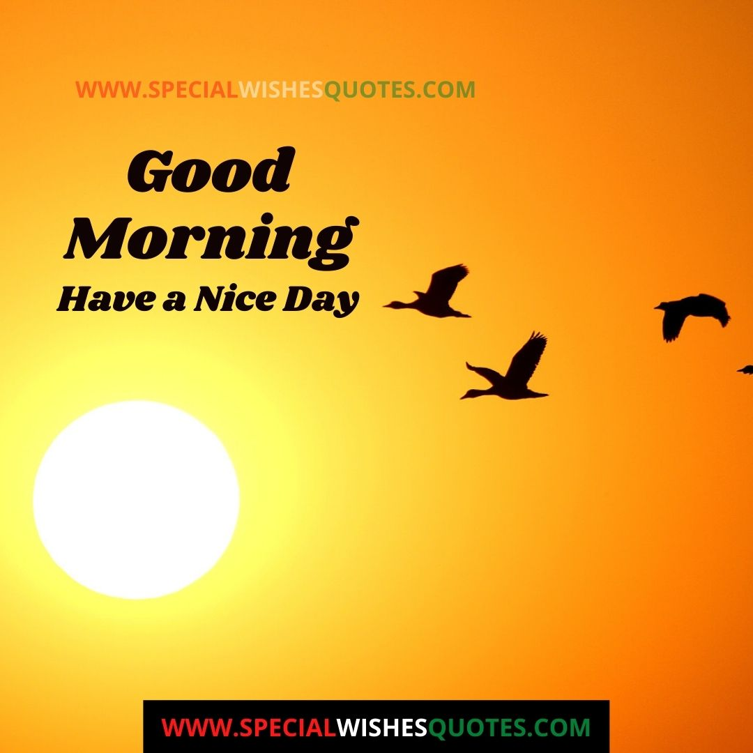 have nice day image