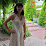 Daniela Nitu's profile photo