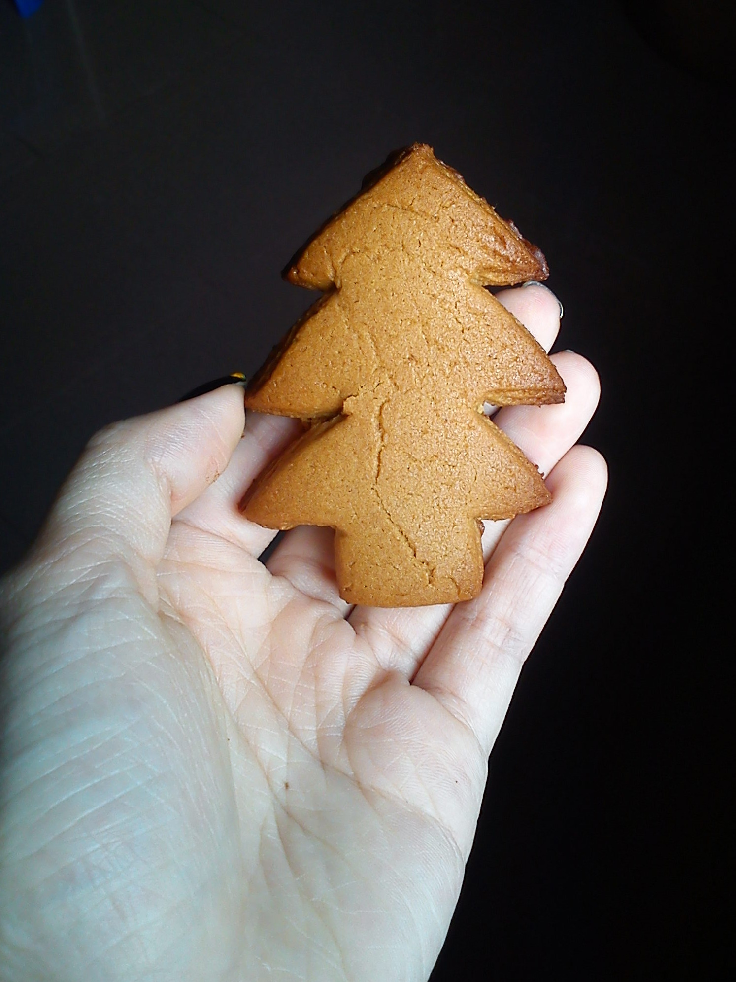 Gingerbread tree!