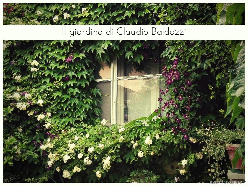 [Il+giardino+di+Claudio+%2820%29%5B3%5D]