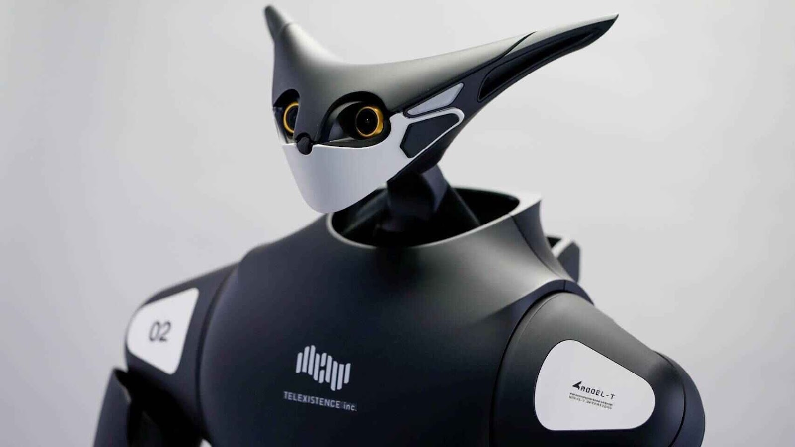 TECNOLOGIA: IN GIAPPONE TESTATI COMMESSI ROBOT COMANDATI A DISTANZA.
