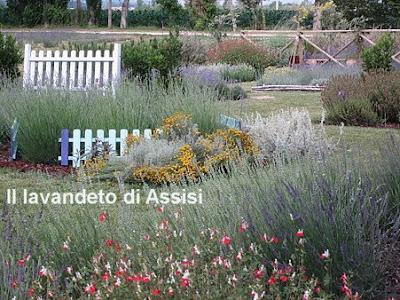 Progetti giardini online gratis progetti giardini privati - Foto aiuole da giardino ...