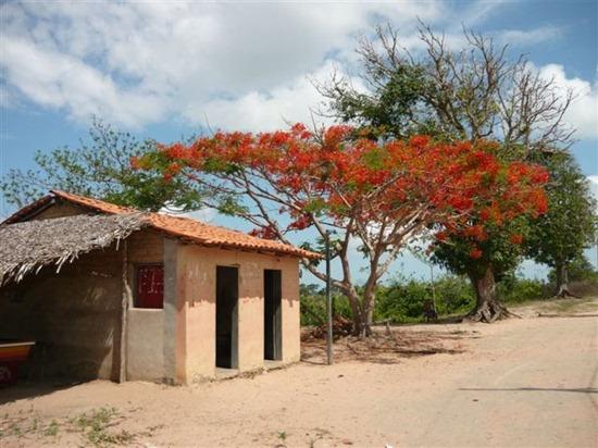 Prainha - Ikatu, Maranhao, foto: Daniel Coelho/Panoramio