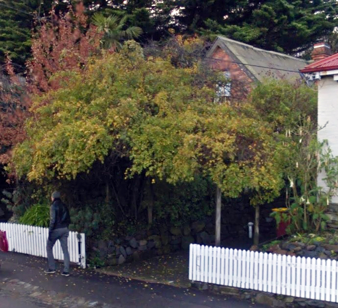 Bruce House 15 York Street Launceston (obscured) Streetview
