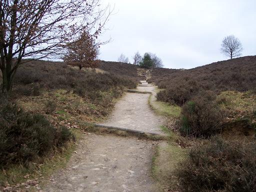 Rheden 2008-01-27 (7).JPG