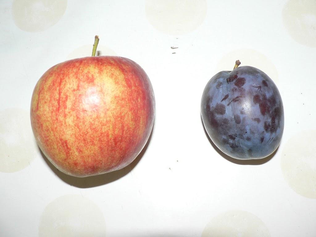 De Kleuters maken zelf een fruit- en groentewinkel. - P1260525.JPG
