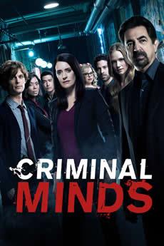 Baixar Série Criminal Minds 14ª Temporada Torrent Dublado Grátis