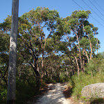 Currie Rd Service trail (127507)
