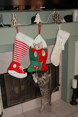 Bengal Cat Christmas Stocking