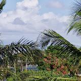 06-19-13 Hanauma Bay, Waikiki - IMGP7452.JPG