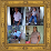 manuel veras's profile photo